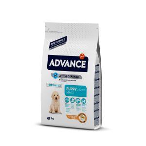 Hrana uscata Advance Maxi Puppy Protect